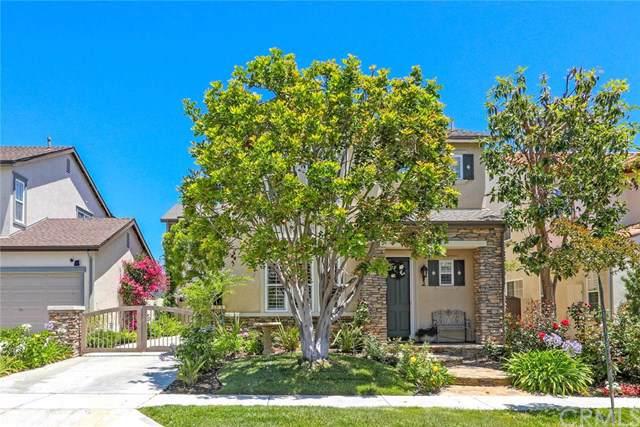 3 Via Zamora, San Clemente, CA 92673 (#OC19167351) :: Z Team OC Real Estate