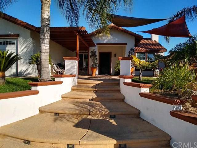 22065 Blondon Court, Wildomar, CA 92595 (#SW19170217) :: Allison James Estates and Homes