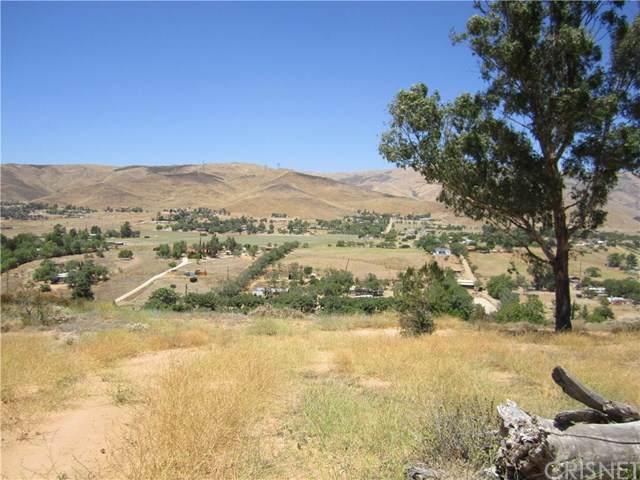 0 Vac/Vic Sierra Hwy/Anthony Road, Agua Dulce, CA 91350 (#SR19170849) :: Provident Real Estate