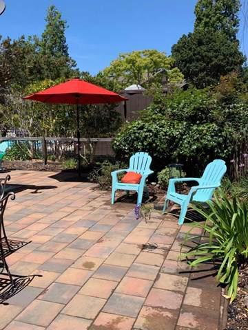 111 Tree Frog Lane, Santa Cruz, CA 95060 (#ML81759888) :: Team Tami