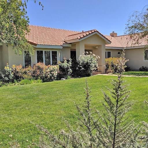 42804 Joey Road, Lake Elizabeth, CA 93532 (#SR19170763) :: Fred Sed Group