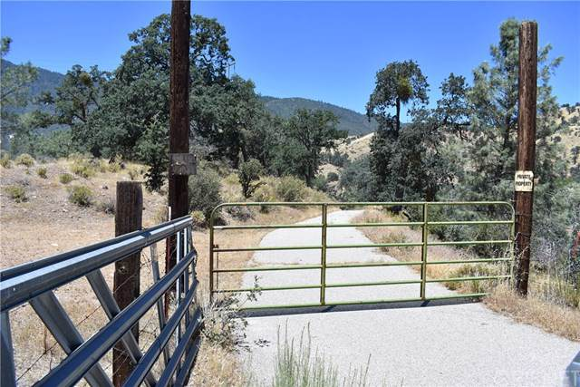 11800 Caliente Bodfish Road, Bodfish, CA 93518 (#SR19171208) :: J1 Realty Group
