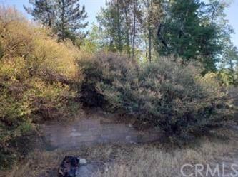 141 Agate, Cedar Glen, CA 92321 (#EV19169119) :: The Marelly Group | Compass