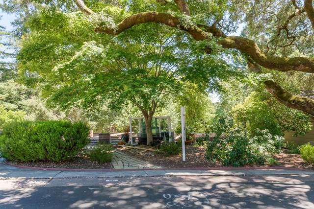 552 Bean Creek Road, Scotts Valley, CA 95066 (#ML81761101) :: Team Tami