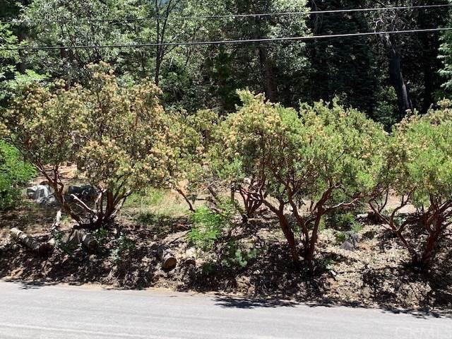 0 Cedar Avenue, Forest Falls, CA 92305 (#EV19171435) :: Fred Sed Group