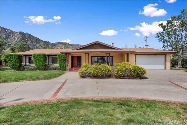 33025 Machado Street, Lake Elsinore, CA 92530 (#SW19171262) :: Provident Real Estate