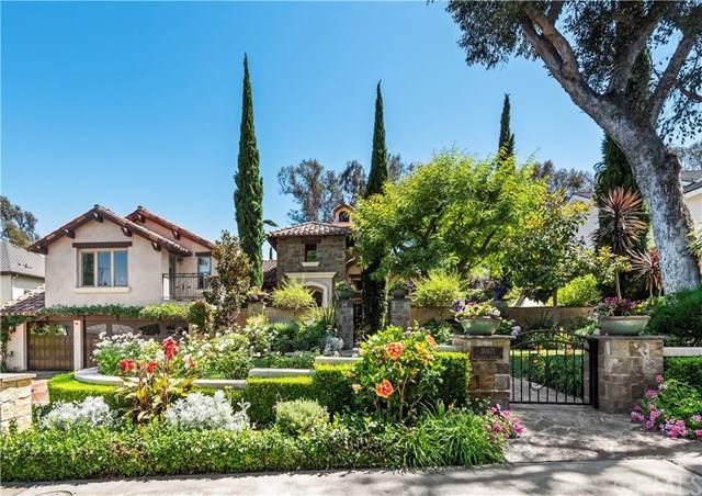 30171 Hillside Terrace, San Juan Capistrano, CA 92675 (#OC19164286) :: Fred Sed Group