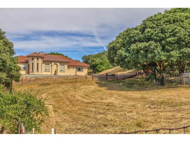 2300 Salinas Road, San Juan Bautista, CA 95045 (#ML81761266) :: Z Team OC Real Estate