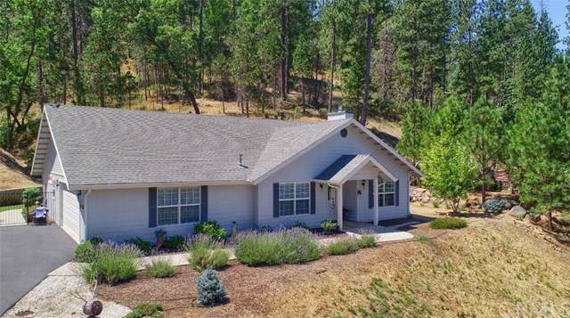 48818 Holly Lane, Coarsegold, CA 93614 (#FR19171872) :: Twiss Realty
