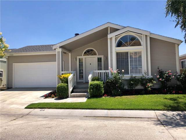 19884 Canyon View Drive, Canyon Country, CA 91351 (#SR19171810) :: Fred Sed Group