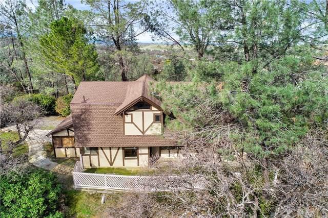 16000 Rancho Tehama, Corning, CA 96021 (#SN19172060) :: Keller Williams Realty, LA Harbor