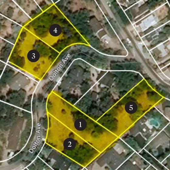 Dolton, San Carlos, CA 94070 (#ML81761365) :: Fred Sed Group