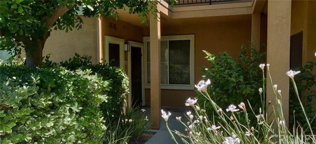 20000 Plum Canyon Road #518, Saugus, CA 91350 (#SR19172638) :: Z Team OC Real Estate