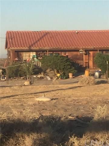 18837 Silver Rock Road, El Mirage, CA 92301 (#DW19172753) :: J1 Realty Group