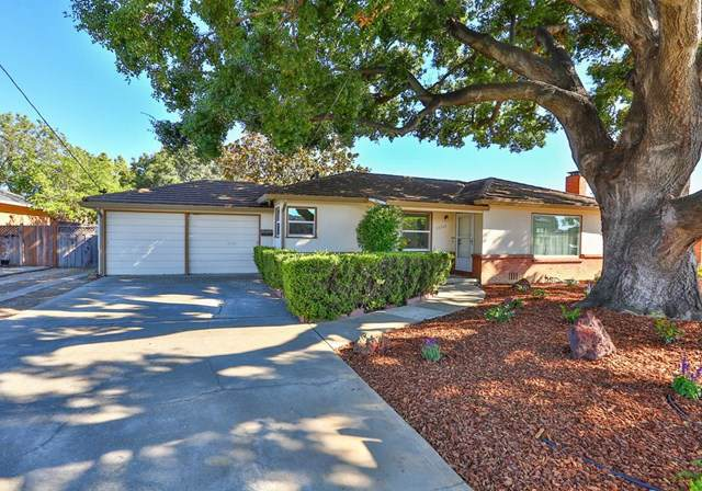 14960 Joanne Avenue, San Jose, CA 95127 (#ML81761446) :: Powerhouse Real Estate