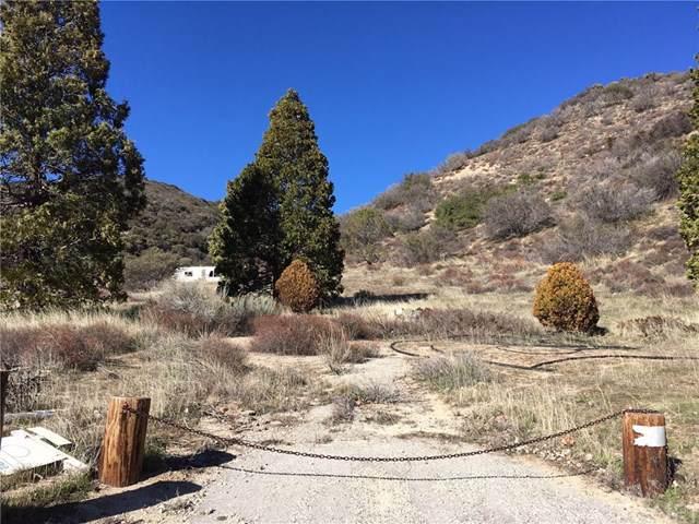 0 Noblett Drive, Lake Hughes, CA 93532 (#SR19172871) :: Fred Sed Group