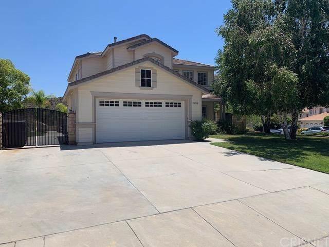 28016 Rainier Road, Castaic, CA 91384 (#SR19143310) :: Naylor Properties