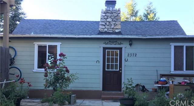 2372 Deep Creek Drive, Running Springs, CA 92382 (#SB19165438) :: Z Team OC Real Estate