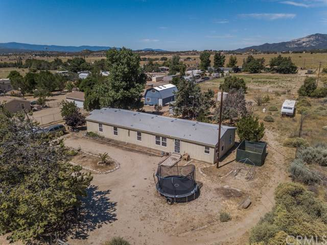 37761 Louise Street, Anza, CA 92539 (#SW19173092) :: California Realty Experts