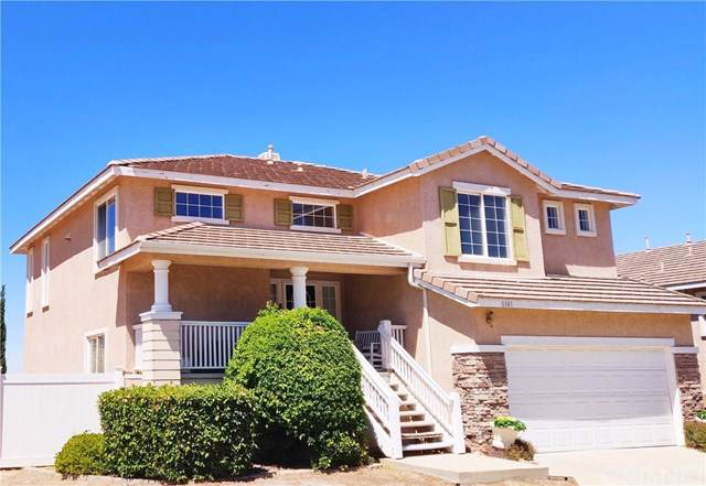1141 Cactus Drive, Palmdale, CA 93551 (#SR19170284) :: Rogers Realty Group/Berkshire Hathaway HomeServices California Properties