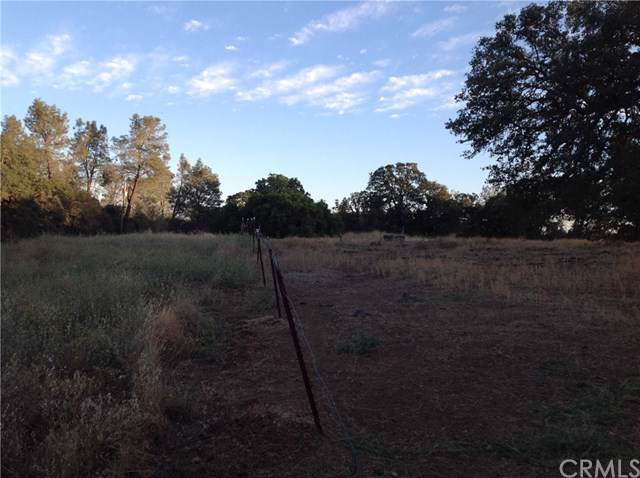 0 Shady Oak Drive, Oroville, CA 95966 (#OR19173549) :: The Laffins Real Estate Team
