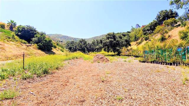 28532 Williams Canyon Road, Silverado Canyon, CA 92676 (#CV19173571) :: The Laffins Real Estate Team