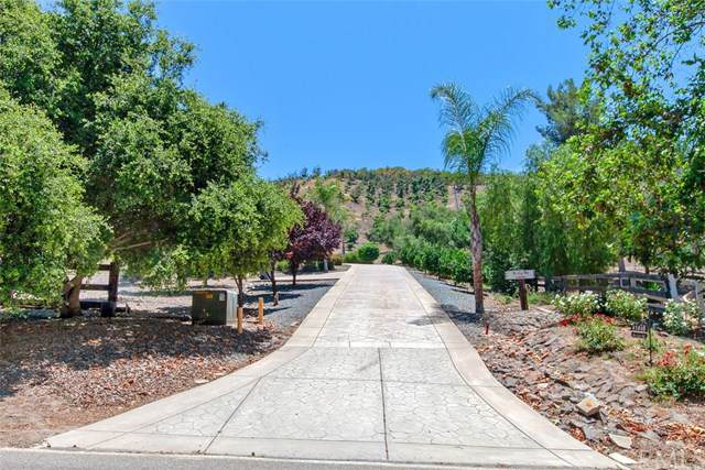 43840 De Luz Road, Temecula, CA 92590 (#SW19164418) :: California Realty Experts
