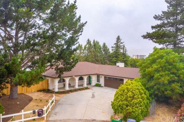 3130 Lucky Lane, Santa Ynez, CA 93460 (#PI19172954) :: RE/MAX Parkside Real Estate