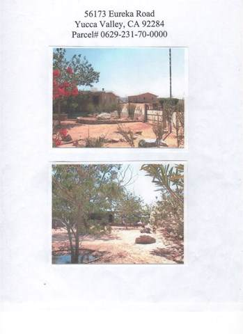 56173 Eureka Street, Yucca Valley, CA 92284 (#JT19173684) :: The Danae Aballi Team