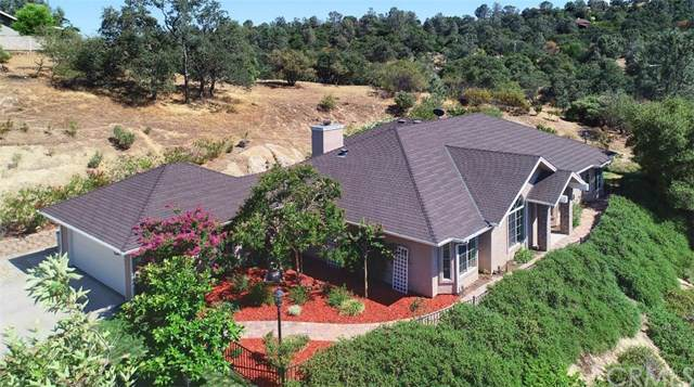 31235 North Dome Drive, Coarsegold, CA 93614 (#FR19173785) :: Twiss Realty