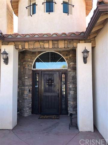42153 Lupin Way, Lancaster, CA 93536 (#SR19174035) :: Fred Sed Group