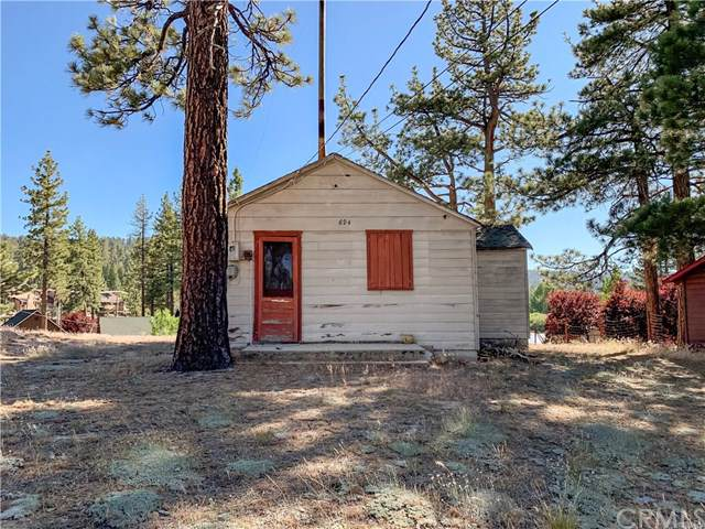 694 Litner Road, Big Bear, CA 92315 (#CV19170312) :: EXIT Alliance Realty