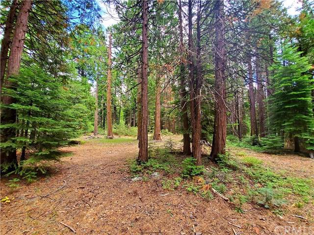 0 Humboldt Lot 28 Road, Butte Meadows, CA 95942 (#SN19174046) :: Heller The Home Seller
