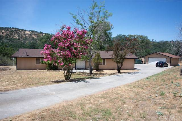 41957 Winchester Court, Coarsegold, CA 93614 (#FR19174437) :: Twiss Realty