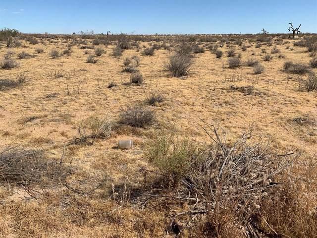0 Desert Flower Road, Adelanto, CA 92301 (#515699) :: The Darryl and JJ Jones Team