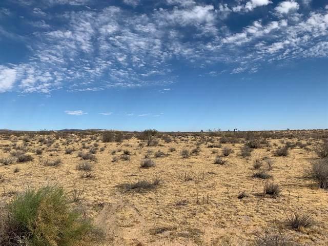 0 Desert Flower Road, Adelanto, CA 92301 (#515701) :: The Darryl and JJ Jones Team