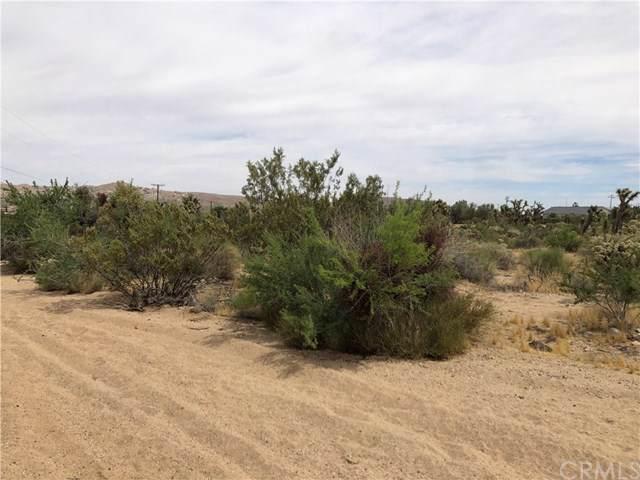1234 Bonita Avenue, Yucca Valley, CA 92252 (#JT19175079) :: RE/MAX Empire Properties