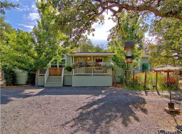 51 Red Tape Road, Oroville, CA 95965 (#PA19067565) :: RE/MAX Masters