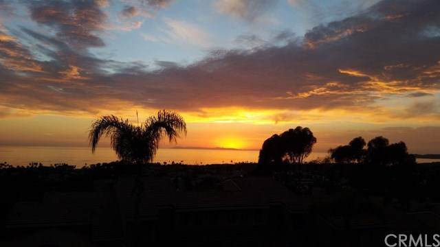 23 Vista Del Ponto, San Clemente, CA 92672 (#OC19172155) :: RE/MAX Masters