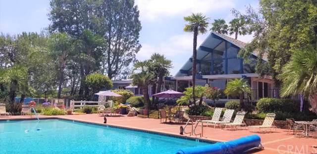 1145 E Barham #68 Drive, San Marcos, CA 92078 (MLS #SW19175414) :: Desert Area Homes For Sale