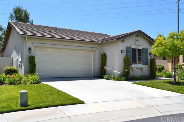 1553 Big Bend, Beaumont, CA 92223 (MLS #EV19175439) :: Desert Area Homes For Sale