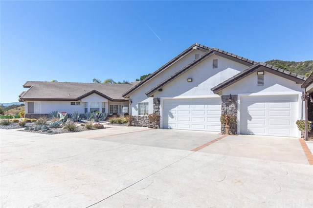 30771 Sloan Canyon Road, Castaic, CA 91384 (#SR19175293) :: RE/MAX Masters