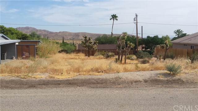 61640 Sunburst Drive, Joshua Tree, CA 92252 (#JT19175862) :: The Laffins Real Estate Team
