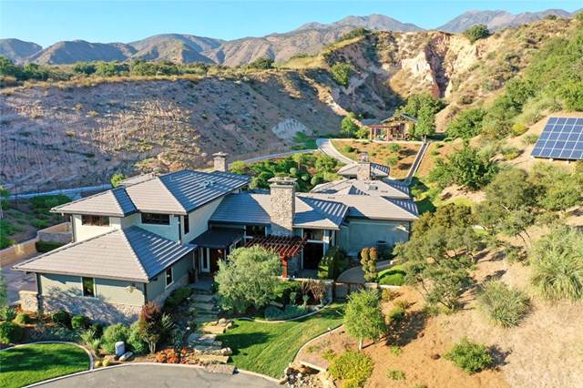 30521 Shelter Canyon Road, Trabuco Canyon, CA 92679 (#OC19173225) :: RE/MAX Empire Properties