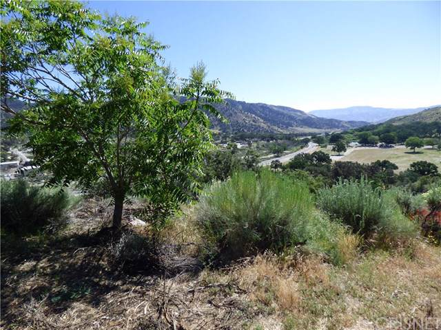 3408 Iowa Trail, Frazier Park, CA 93225 (#SR19177087) :: RE/MAX Parkside Real Estate