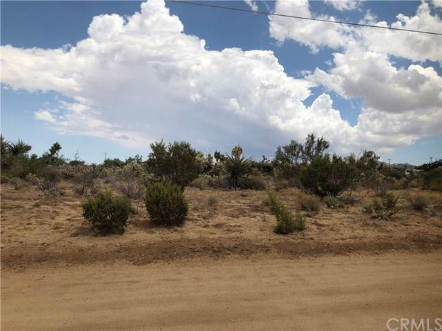 0 Bonita, Yucca Valley, CA 92284 (#JT19177078) :: RE/MAX Empire Properties