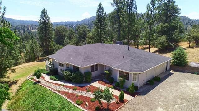 42524 Nelder Heights Drive, Oakhurst, CA 93644 (#FR19177920) :: The Laffins Real Estate Team
