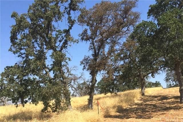 0 Avenida Lugo Road, La Grange, CA 95329 (#IV19178817) :: Sperry Residential Group