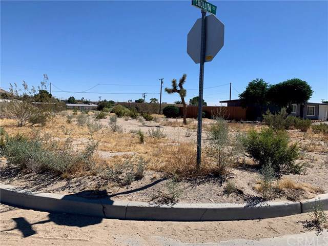 0 Cholita Rd, Joshua Tree, CA 92252 (#JT19178859) :: Sperry Residential Group