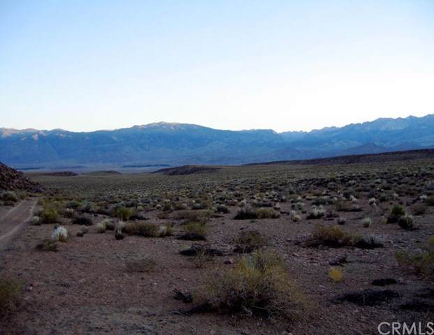 0 Chalk Bluff Road, Bishop, CA 93514 (#FR19178962) :: Sperry Residential Group